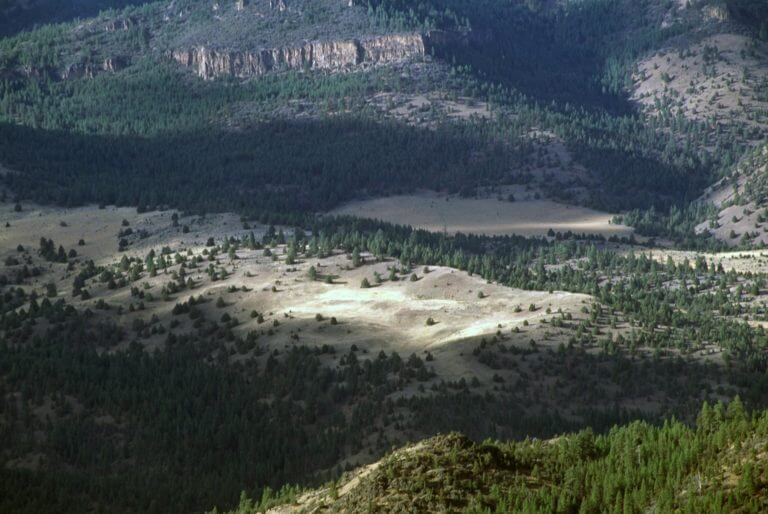 Ochoco Divide at McKay Creek