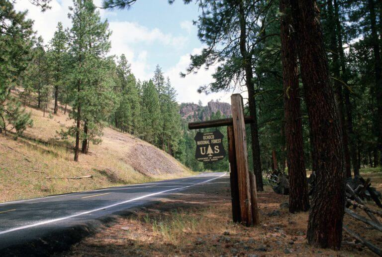 Ochoco National Forest sign