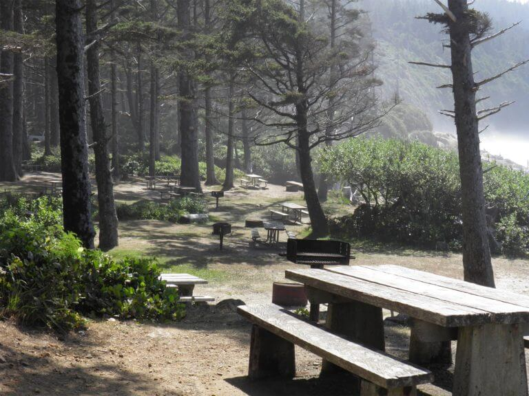 Cape Lookout State Park picnic area