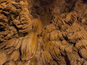 Ceiling of Oregon Caves