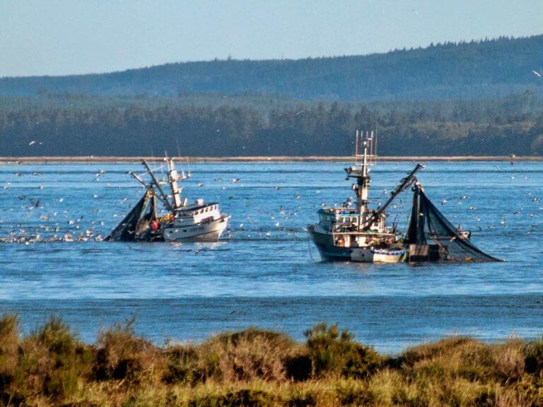 Fishing boats off Astoria