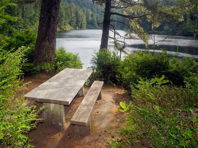 picnic table in Umpqua Lighthouse State Park
