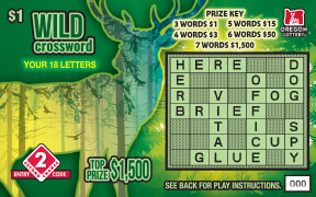 Wild Crossword front