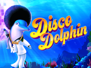 Disco Dolphin Hero