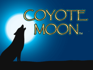 Coyote Moon Hero